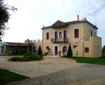 house 3 370x300 - Amaliada, Peloponesse'de 500 m2 villa + üzüm bağı