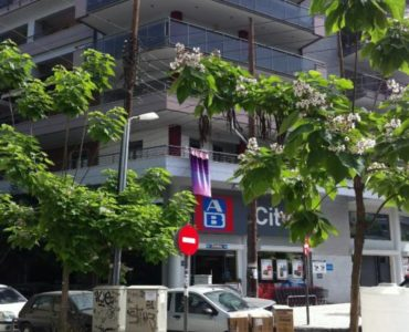 photo 7 370x300 - Selanik'de Muhteşem Ticari Yatırım Fırsatı