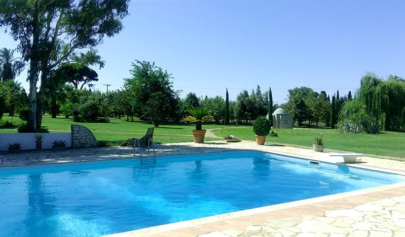 pool 610 - Amaliada, Peloponesse'de 500 m2 villa + üzüm bağı